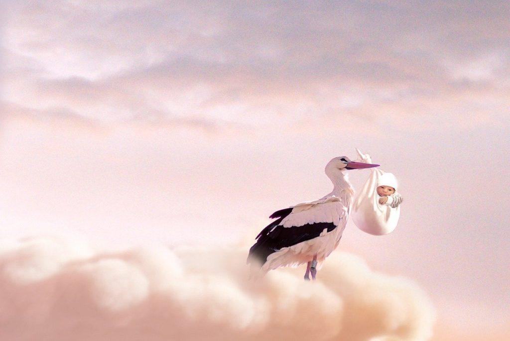 birth, baby, stork